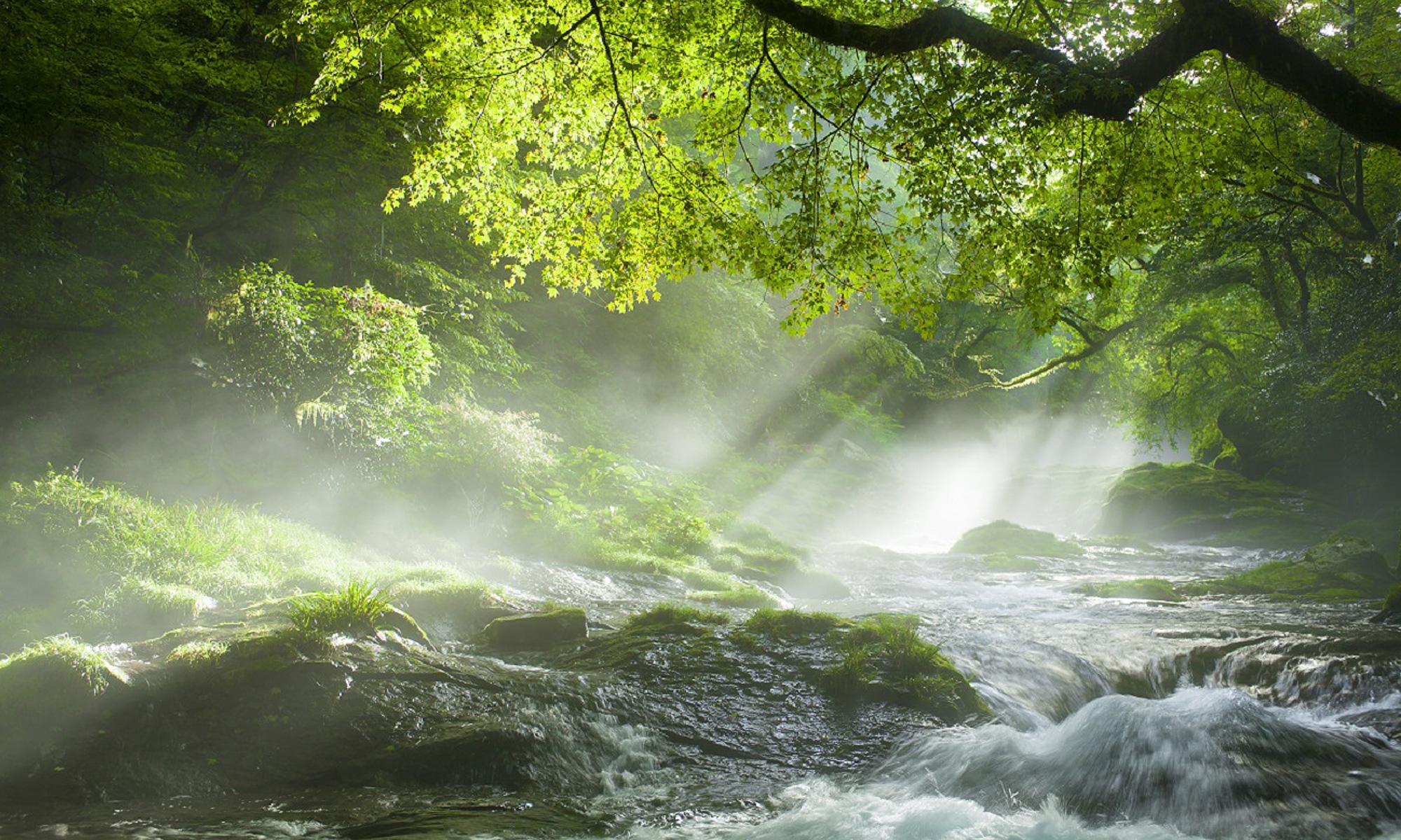 風景写真家 玄一生 九州四季折々